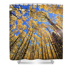 Aspen Hues Shower Curtain