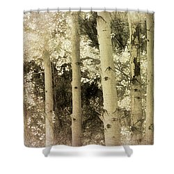 Aspen In Sepia Shower Curtain