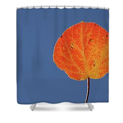 Aspen Leaf 1 Shower Curtain by Marie Leslie