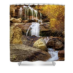 Aspen-lined Waterfalls Shower Curtain