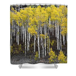 Aspen Monochrome Shower Curtain by Aaron Spong