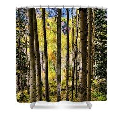 Aspen Mood - Autumn - Colorful Colorado Shower Curtain by Jason Politte