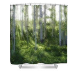Aspen Morning 2 Shower Curtain by Marie Leslie