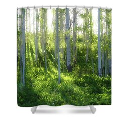 Aspen Morning 3 Shower Curtain by Marie Leslie