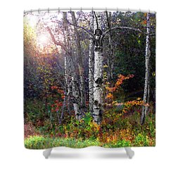 Aspen Morning Shower Curtain