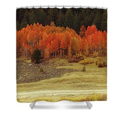 Aspen, October, Hope Valley Shower Curtain