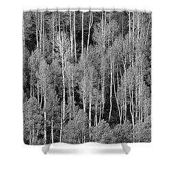 Aspen Pattern Shower Curtain