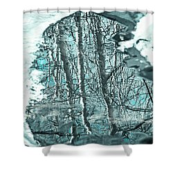 Aspen Reflection Shower Curtain