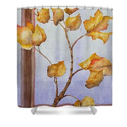 Aspen  Shower Curtain by Ruth Kamenev