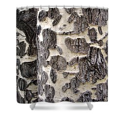 Aspen Scars Shower Curtain