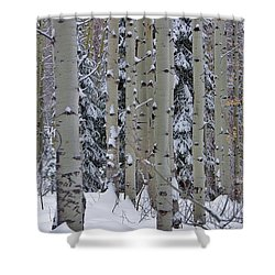 Aspen Snow Shower Curtain