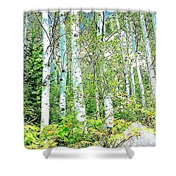 Aspen Splender Steamboat Springs Shower Curtain