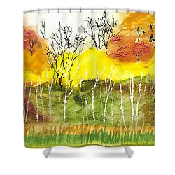 Aspen Trees In Autumn Shower Curtain