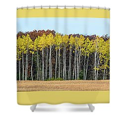 Aspen Triptych Shower Curtain