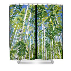 Aspen Twin Perspectives Shower Curtain