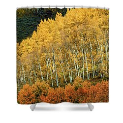 Aspen Waves Shower Curtain