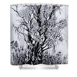 Shower Curtain featuring the drawing Aspens by Anna  Duyunova