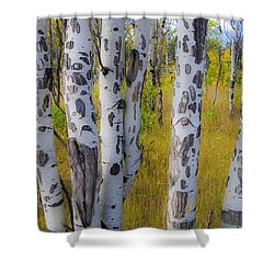 Shower Curtain featuring the photograph Aspens by Gary Lengyel