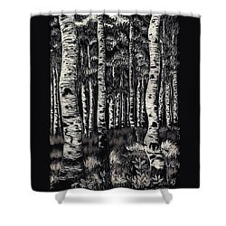 Shower Curtain featuring the drawing Aspens In Mountain Forest by Dawn Senior-Trask