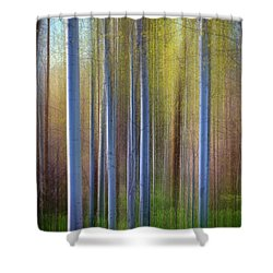 Aspens In Springtime Shower Curtain