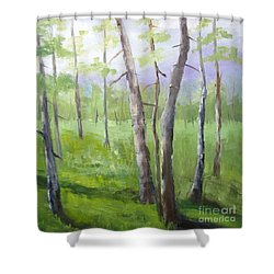 Aspens Soaring Shower Curtain