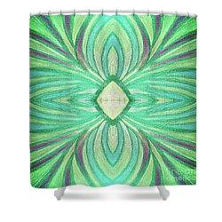 Aspirations Of Harmony Shower Curtain by Rachel Hannah