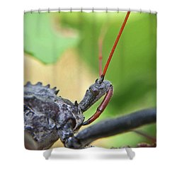 Assassin Bug Macro Shower Curtain