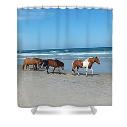 Assateague 2 Shower Curtain
