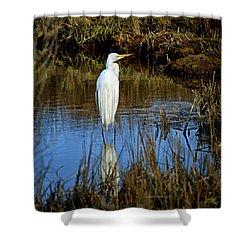 Assateague Island Great Egret Ardea Alba Shower Curtain