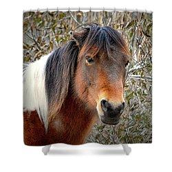 Assateague Island Pony Patricia Irene Shower Curtain