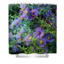 Aster 4468 Idp_2 Shower Curtain