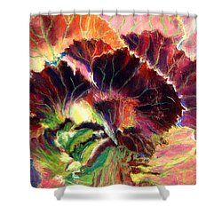 Astonishing Cabbage  Pastel Shower Curtain