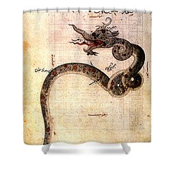 Astronomy: Arabic Ms Shower Curtain by Granger
