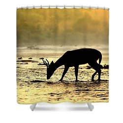 At Home Shower Curtain