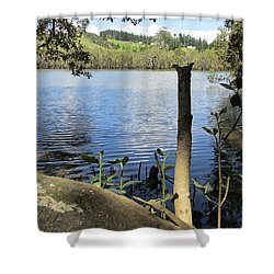 Shower Curtain featuring the photograph At Mangroves Edge 2 by Dianne  Connolly