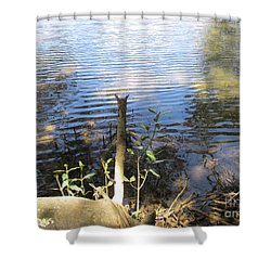 Shower Curtain featuring the photograph At Mangroves Edge by Dianne  Connolly