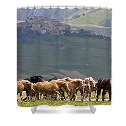 Castelluccio Di Norcia, Parko Nazionale Dei Monti Sibillini, Italy Shower Curtain