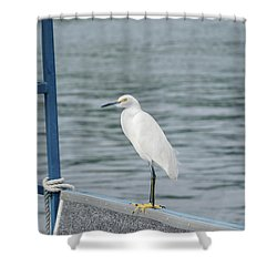 Shower Curtain featuring the photograph At The Edge by Kim Hojnacki
