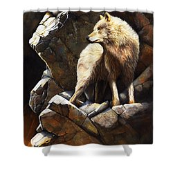 At The Edge Of Time Shower Curtain