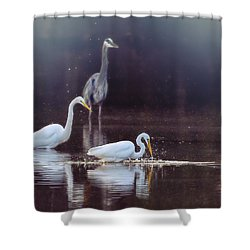At The Fishing Pond Shower Curtain