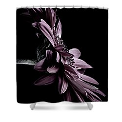 At The Moonlight Shower Curtain