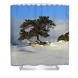 At The Peak Shower Curtain