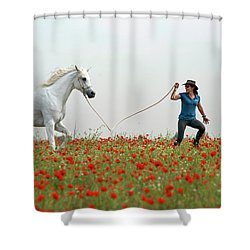At The Poppies' Field... 2 Shower Curtain by Dubi Roman