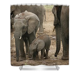 Shower Curtain featuring the photograph At The Salt Lick 2 by Gary Hall