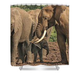 Shower Curtain featuring the photograph At The Salt Lick by Gary Hall