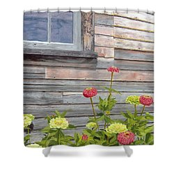 Shower Curtain featuring the painting At The Shelburne by Lynne Reichhart