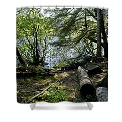 At The Water Edge. Shower Curtain