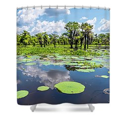 Atchaflaya Basin Reflection Pool Shower Curtain by Andy Crawford