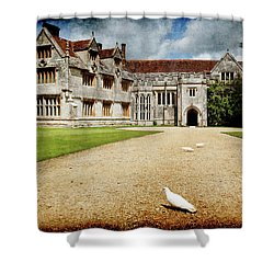 Athelhamptom Manor House Shower Curtain