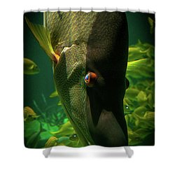 Atlantis Friends Shower Curtain